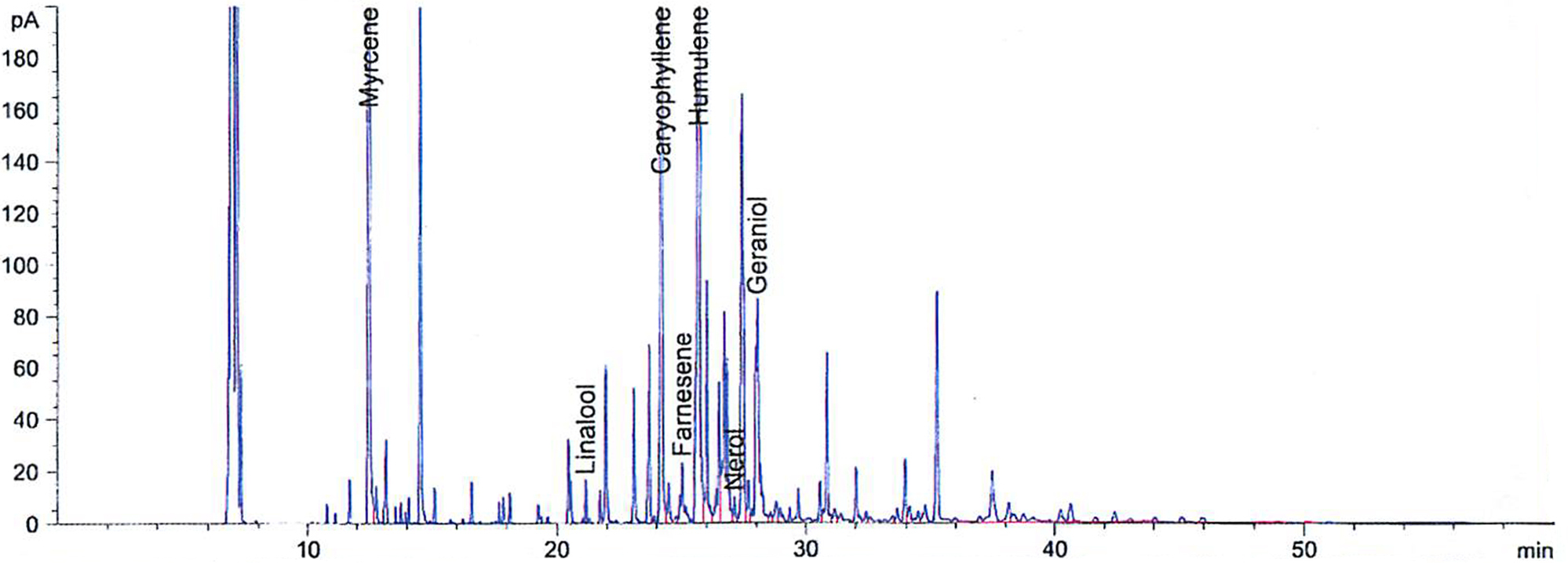 ADHA 484 Graph